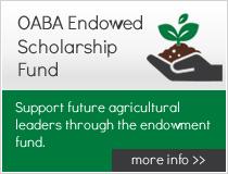 OABA Endowed Scholarship Fund
